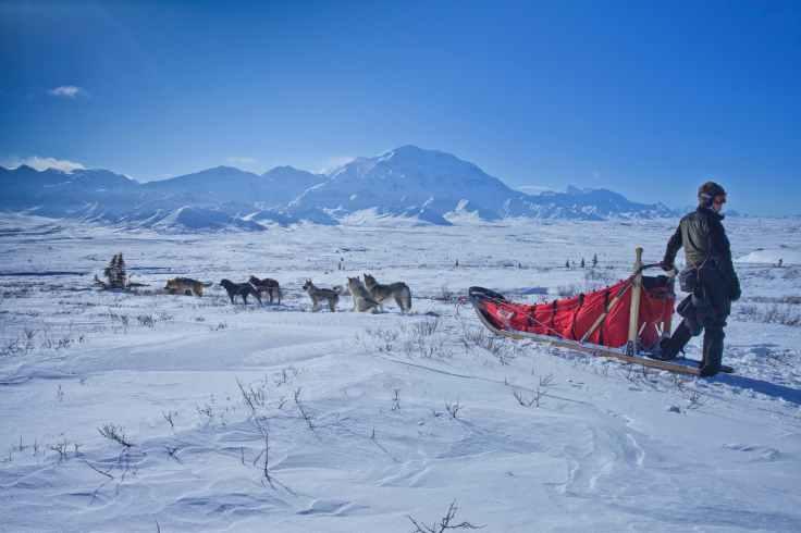 adventure alaska alpine cold