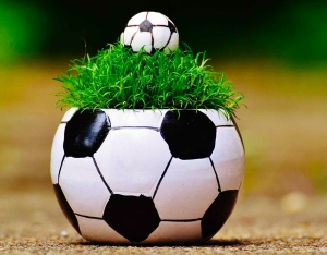 white and black soccer ball theme plant pot